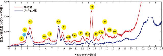 SR-蛍光X線分析法によるオリーブの元素分析Elemental Analysis of Every ...